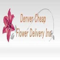 same-day-flower-delivery-denver-co-send-flowers-logo-denver-co-787.jpg