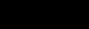Webgurulogo (1).png