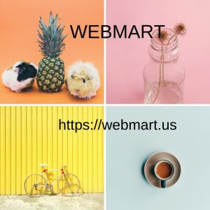 Webmart (10).jpg
