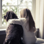 Girl-Dog-Window-150x150.jpg