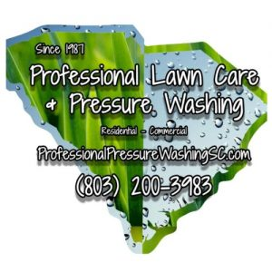 Professional Lawn Care and Pressure Washing  logo.jpg