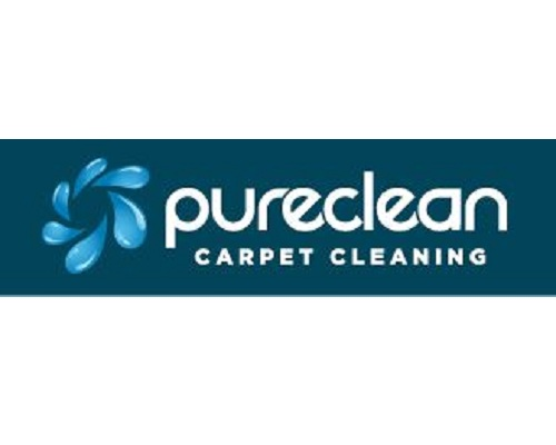 Pure Cleaning logo.png