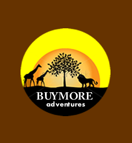 BuyMore Adventures Tour.png