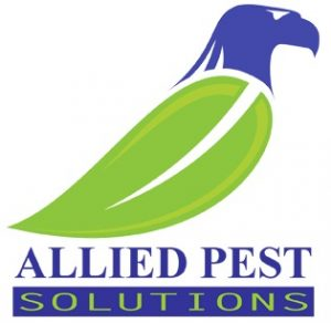 allied-pest-solutions-logo-footer-2.jpg