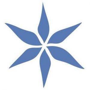 Phyto-C Skin Care - Logo.jpg