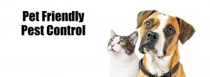 pet-friendly-pest-control.jpg