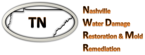 Nashville-Water-Damage-Restoration-Mold-Remediation-Logo.png