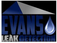 slab-leak-logo.png