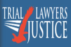 tl4j logo (3).png