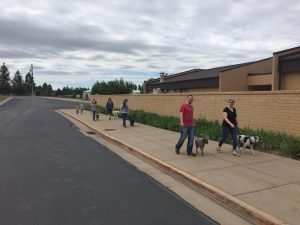 Dog Obedience Kaysville.jpg