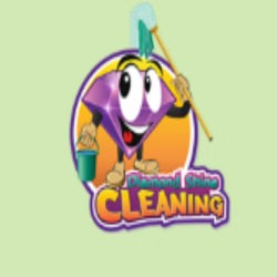 diamondshinecleaningfl13.jpg