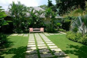 grass-care-miami-law-care-service.jpg