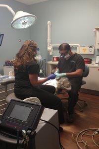 Dental-patient-undergoing-a-sinus-lift-procedure.jpg