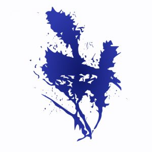 Fair Park Counseling Logo.jpg