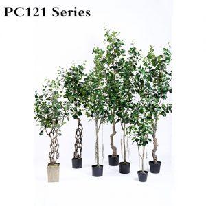 Plastic-Ficus-Microcarpa-Tree - 副本.jpg