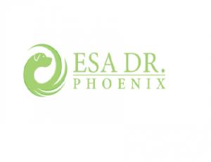 esa dr phoenix.png
