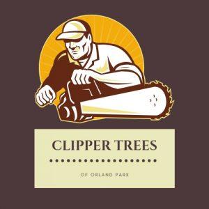 Clipper Trees,.jpg