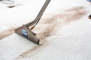 3-Reasons-Spots-Come-Back-After-Carpet-Cleaning-zerorez-phoenix-carpet-cleaning.jpg