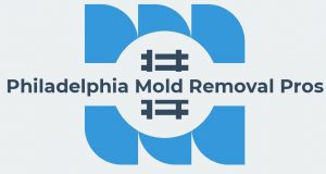 Jonathan Mold Remediation Philadelphia.jpg