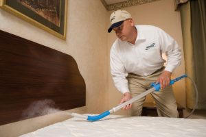 Is-heat-treatment-effective-in-the-fight-against-bed-bugs.jpg